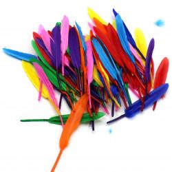 Renkli Tüy (100 Adet karışık)