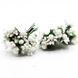 iri pıtırcık krem incili çiçek beyaz