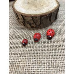 Yapışkanlı Kırmızı Uğur Böceği(100 Adet)